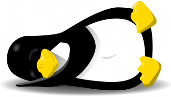 Why is the penguin update taking so long?